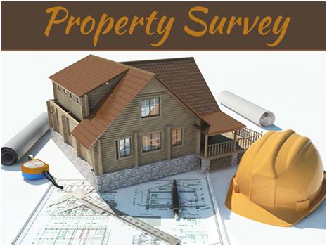 House Survey